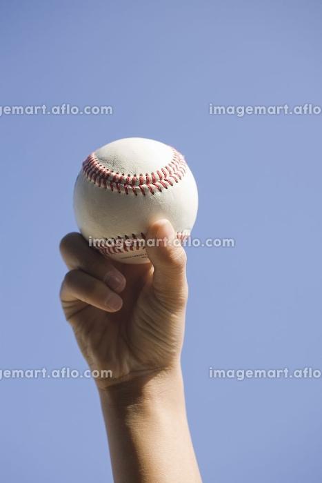 野球ボールを持つ子供の手の販売画像