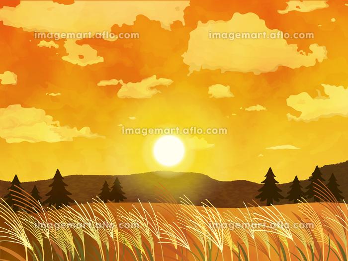 綺麗な夕日とススキの風景イラスト イメージマート