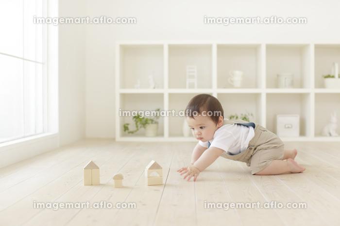 積み木をして遊ぶハーフの赤ちゃんの販売画像