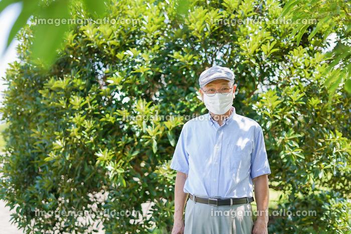 マスクをつけたおじいさんの販売画像