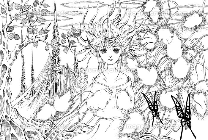 妖精の娘の販売画像