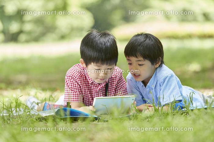 タブレットを見る兄弟の販売画像
