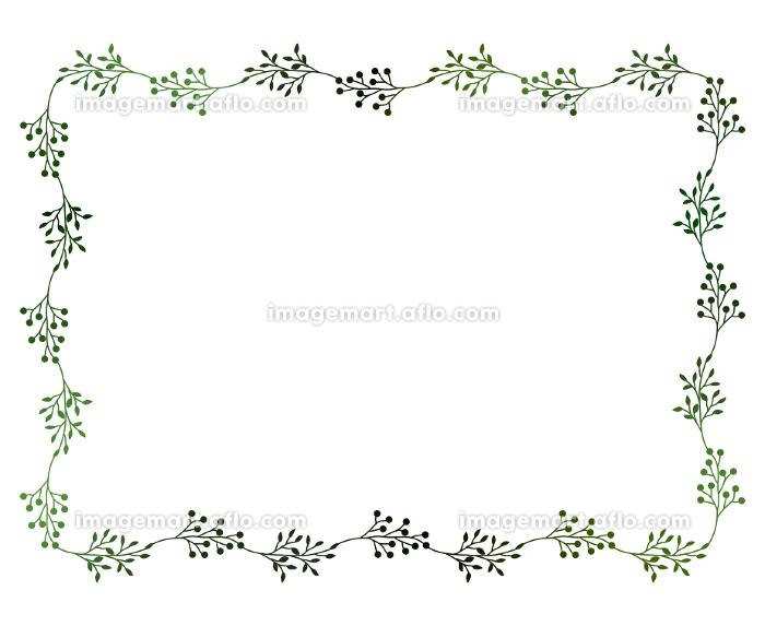緑の小枝と実のフレームイラスト 4の販売画像