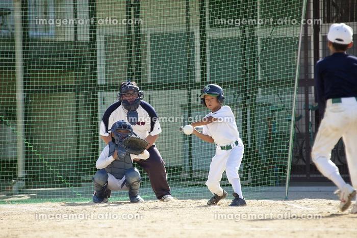 少年野球送りバントの販売画像