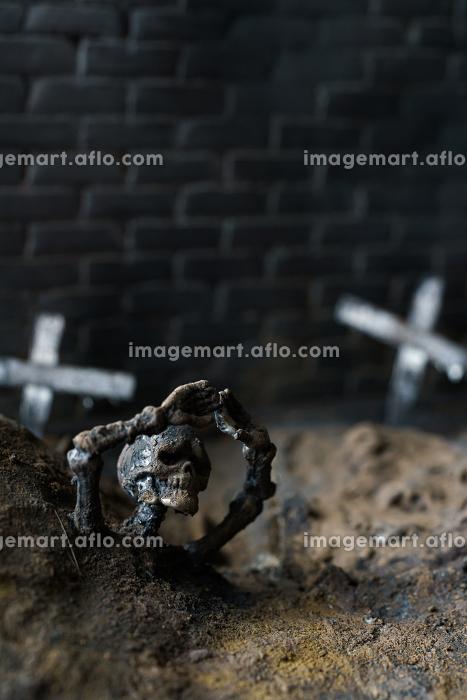 墓場と骸骨のジオラマ模型の販売画像