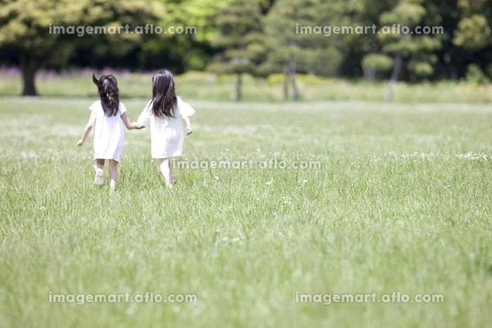 手を繋いで走る2人の女の子の後姿の販売画像