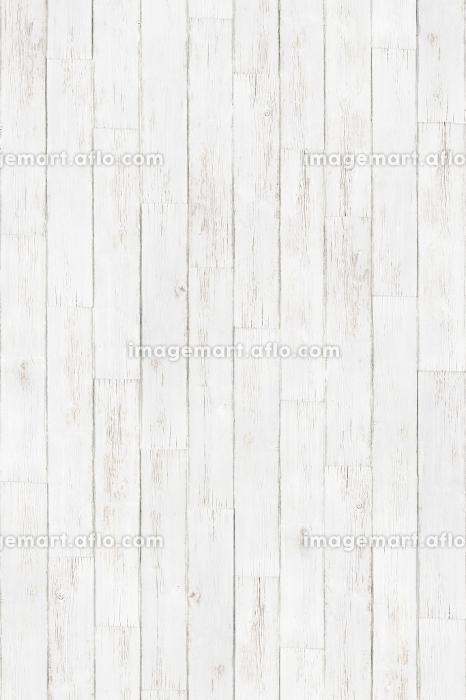 白い背景板・縦の販売画像
