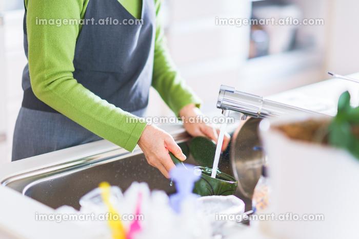 食器洗い 水仕事 シニア 女性 日本人の販売画像