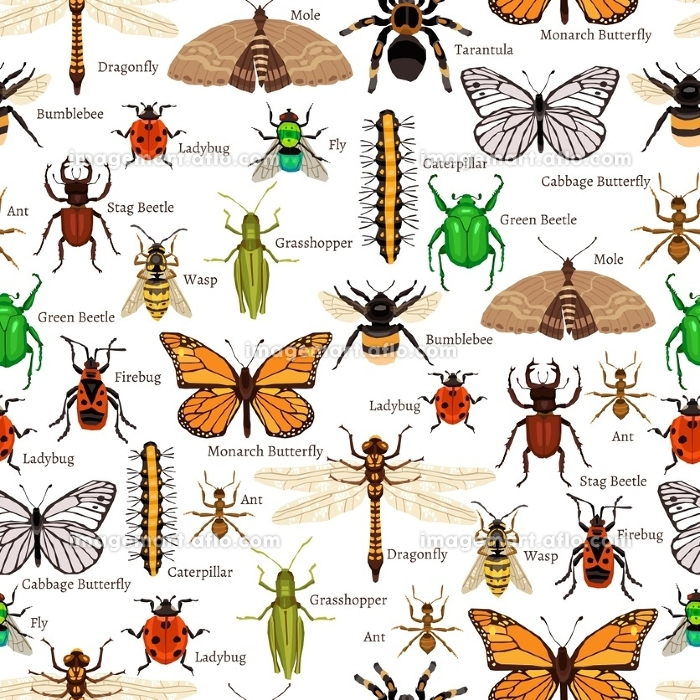 Insects Seamless Pattern. Insects Seamless Pattern. Insects Flat Vector Illustration. Insects Decorative Design.  Insects Elements Collection.