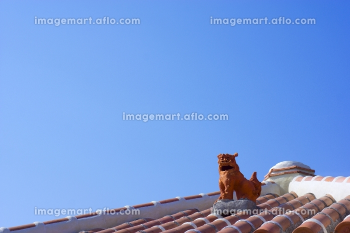 屋根の上のシーサー 沖縄県の販売画像