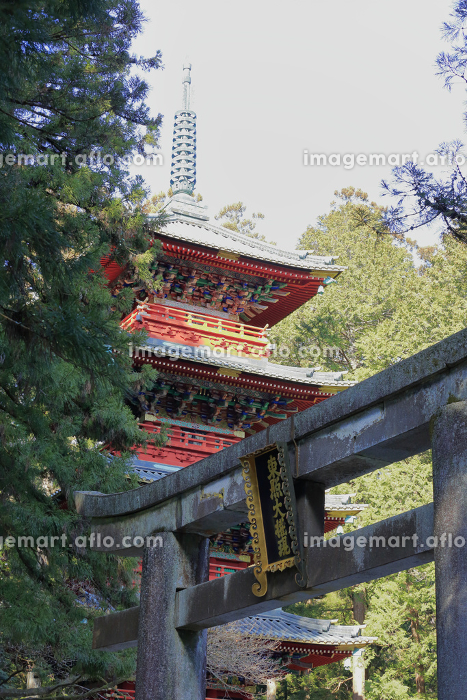 日光 東照宮 石鳥居と五重塔の販売画像