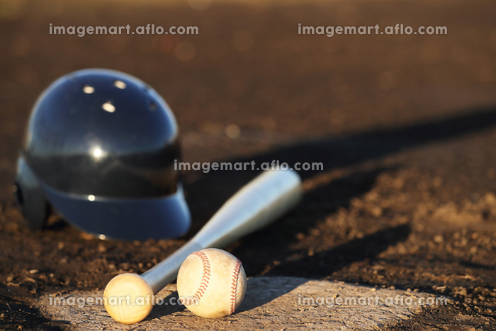 野球の道具の販売画像