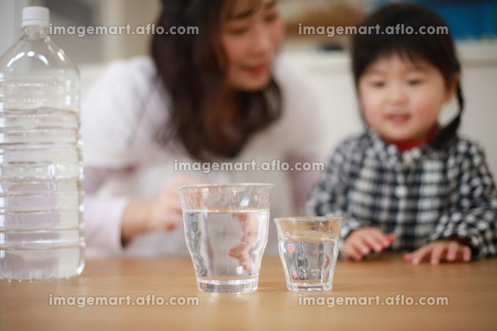 水を飲む親子の販売画像