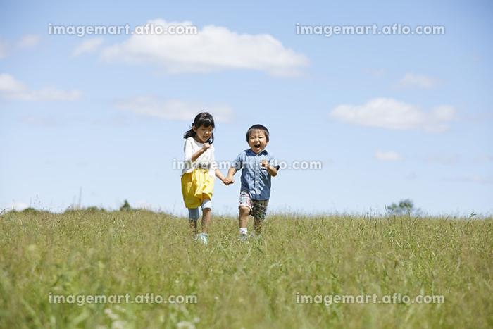 野原を走る姉弟の販売画像