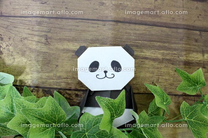 こっそり草むらから顔を出すパンダのイメージの販売画像