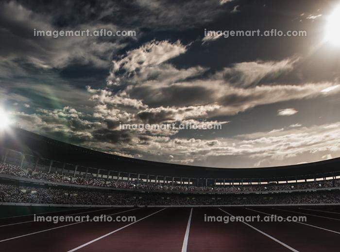 競技場の販売画像