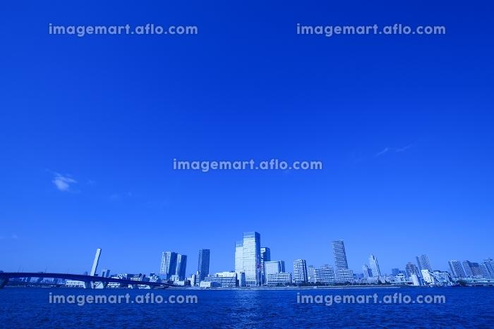 晴海運河と晴海のビル群の販売画像