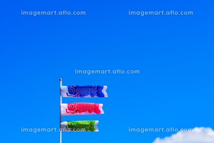こいのぼり 青空 【5月 イメージ】の販売画像