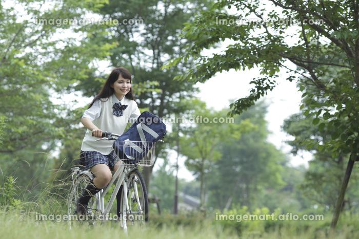 新緑の中の自転車に乗る女子高生の販売画像