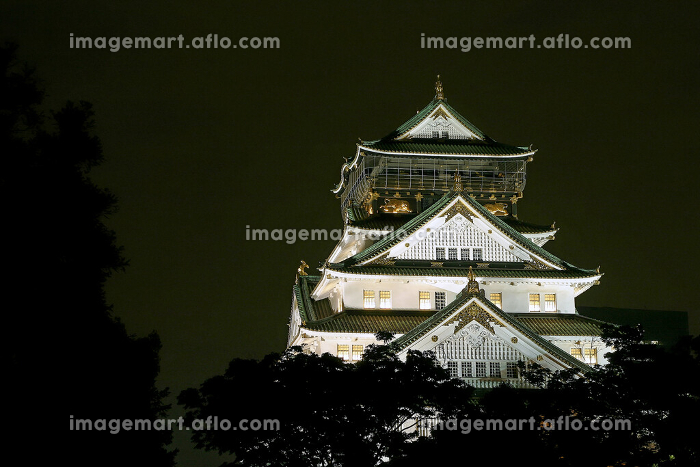 大阪城 夜景の販売画像