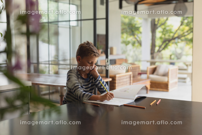 Side view of adorable Caucasian boy studying at table in kitchen at homeの販売画像