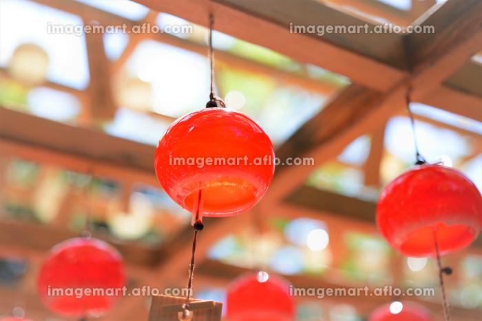 赤い風鈴の販売画像