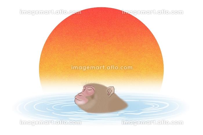 温泉に入るサル イラストの販売画像