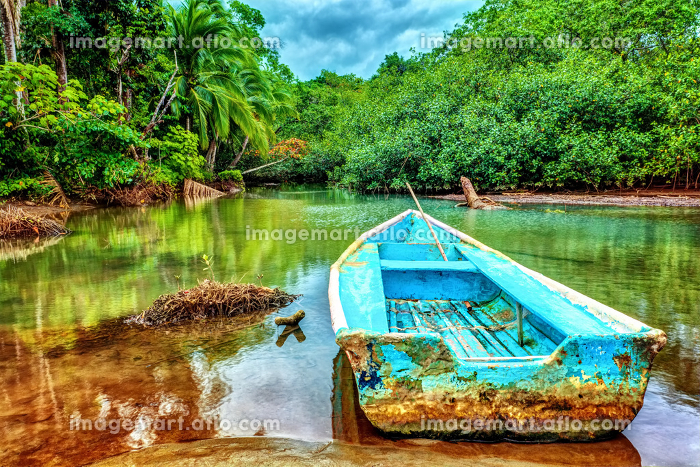 Old boat in tropical riverの販売画像