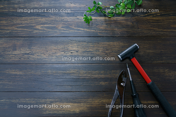 DIY工具 金槌、ドライバー、ペンチの販売画像