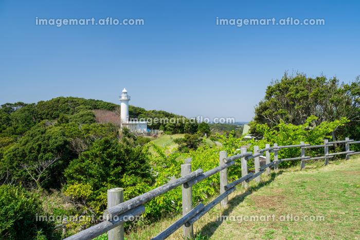 千葉県いすみ市 太東崎灯台 3月の販売画像