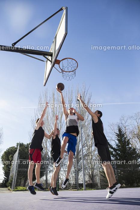 Javier_Bonet_Basket; Juan_Vigon_Basket; Miguel_Basket; Santiago_Basketの販売画像