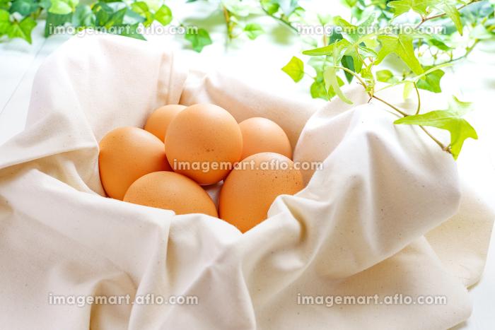 朝摘み卵の販売画像
