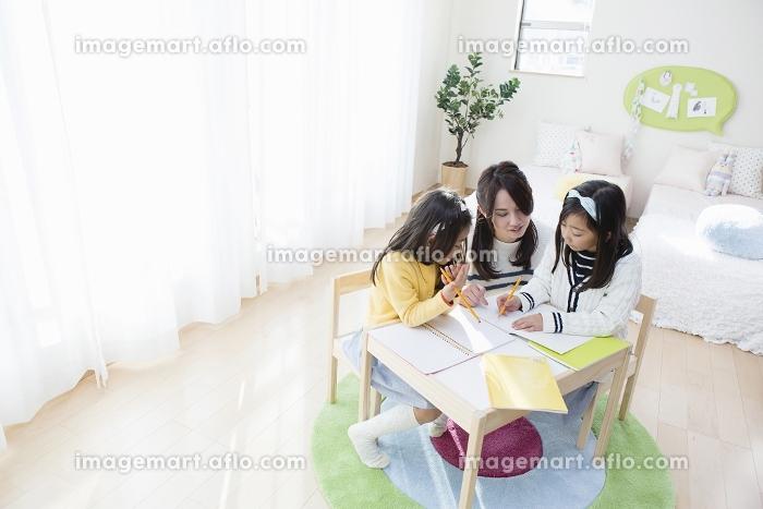 勉強する姉妹の販売画像