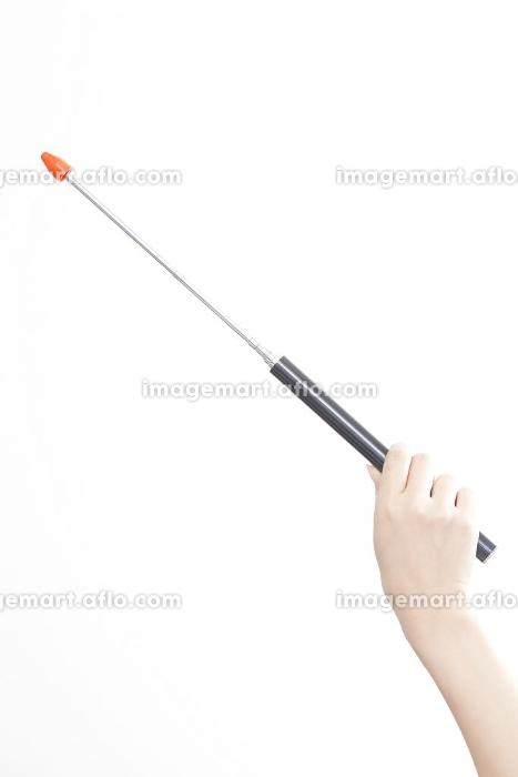 指示棒を持つ女性の手元の販売画像