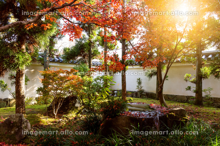 Kokoen Garden with sun beam