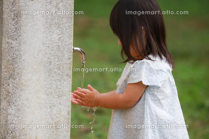 手洗いする女の子の販売画像