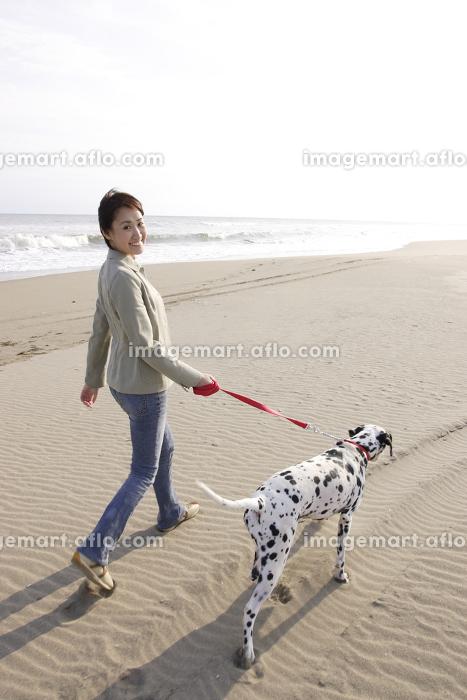 愛犬のダルメシアンと砂浜を散歩する若い女性の販売画像