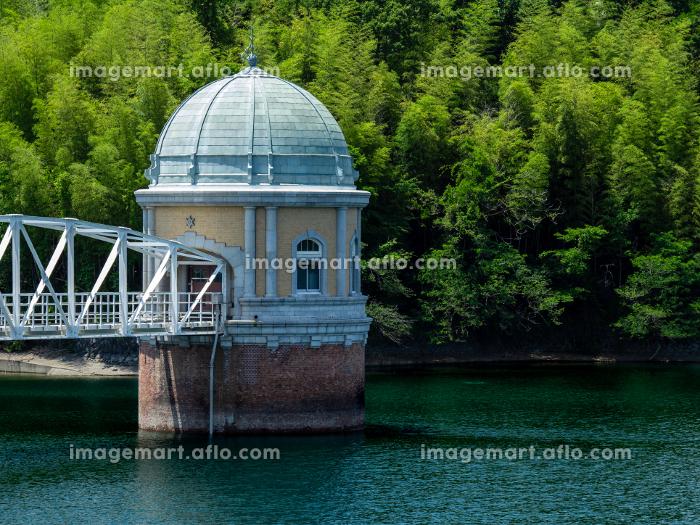 初夏の村山貯水池(多摩湖)の風景の販売画像
