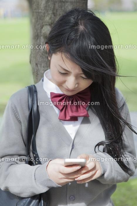 木陰で携帯を見る高校生の販売画像