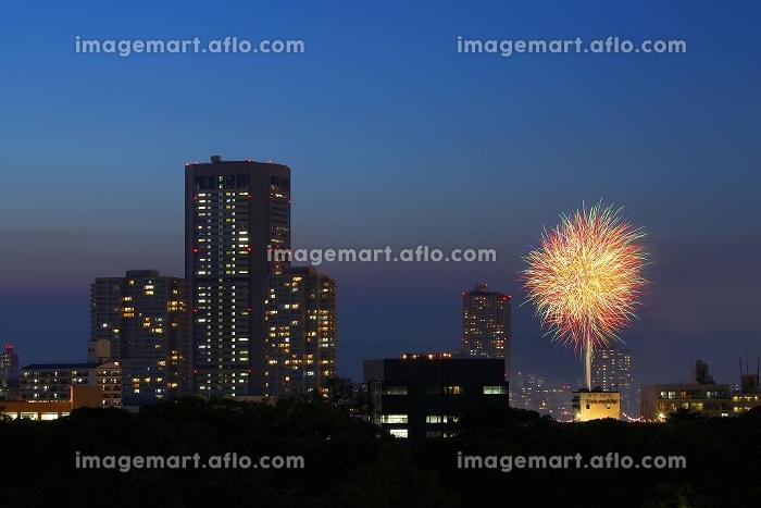 ビル群と花火の販売画像