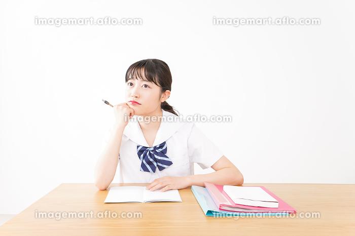 勉強をする学生の販売画像