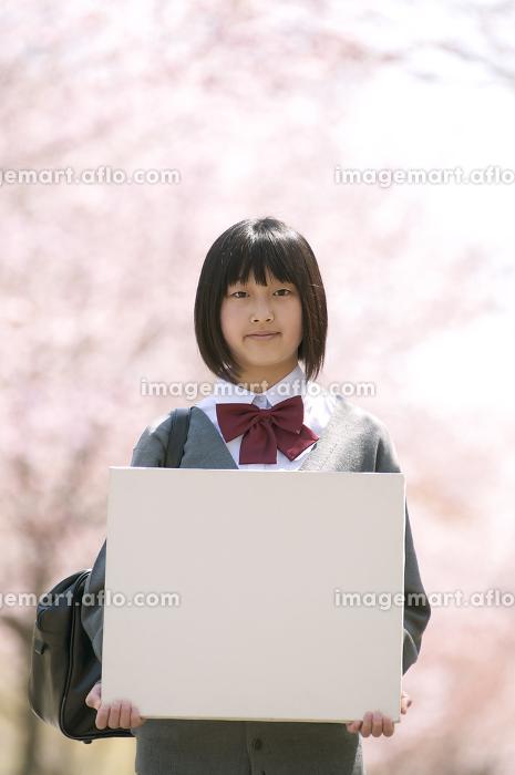 桜の前でメッセージボードを持つ中学生の販売画像