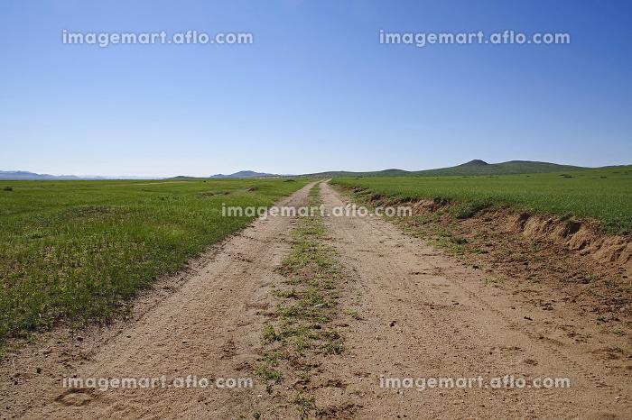 大草原へ続く未舗装路