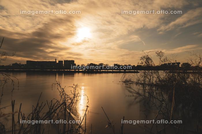 冬の夕暮れの河川敷 埼玉県川口市 12月の販売画像