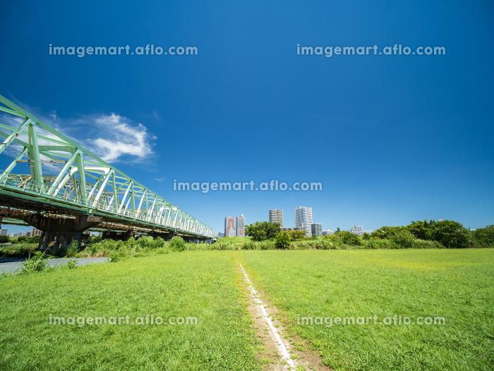 夏の青空と河川敷の野球場 8月の販売画像