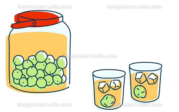 梅酒を二人で飲むイメージイラスト
