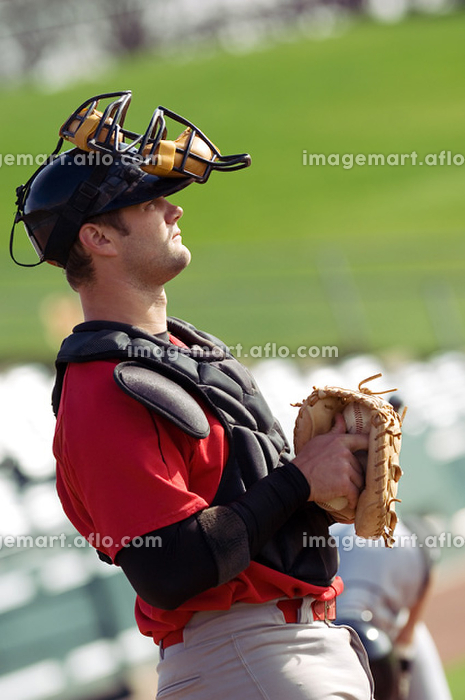 野球のキャッチャーの販売画像