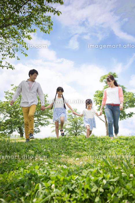 ピクニックをする家族の販売画像