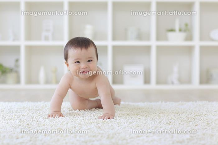 リビングをハイハイする裸のハーフの赤ちゃんの販売画像