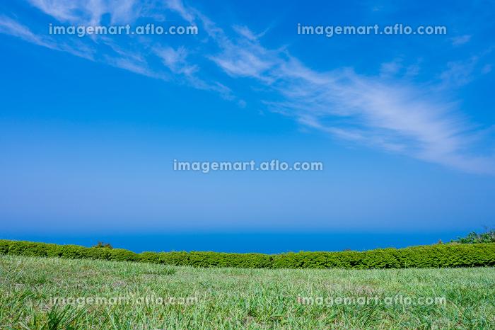 北長門海岸国定公園の綺麗な青空と緑と海の自然風景の販売画像